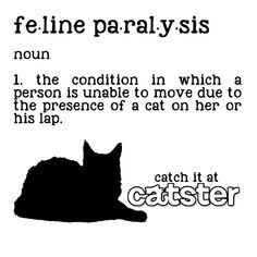 Do you suffer from FELINE PARALYSIS?! My Hubby has this pretty much every evening!   :o)