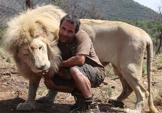 Kevin Richardson, The Lion Whisperer, plays with his big cats. Kevin Richardson, South African Lions, Lions South Africa, Cheetahs, Beautiful Cats, Animals Beautiful, Big Cats, Cats And Kittens, Lions And Hyenas