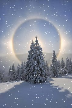 How to Benefit From Winter As A Believer. A post on how Muslims can take advantage of the winter to increase spirituality and good deeds such as fasting. Animated Christmas Pictures, Christmas Images, Christmas Wonderland, Winter Wonderland, Pastel Artwork, Seasonal Image, Winter Scenery, Christmas Scenes, Winter Beauty