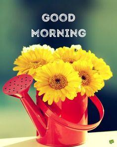 + 171122 + good morning.