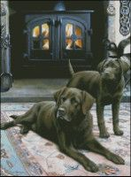 Gallery.ru / Фото #1 - a - erzsi Dogs, Animals, Animales, Animaux, Pet Dogs, Doggies, Animal, Animais