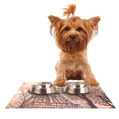 Kess InHouse Sam Posnick 'Eiffel Tower' Feeding Mat for Pet Bowl, 18 by 13-Inch -- Insider's special review you can't miss. Read more  : Cat items