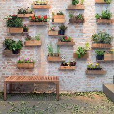 Olha que interessante essa parede: são caixas de madeira (tipo aquelas de feira) que viraram floreiras!  Ideia criativa e com baixo custo! { Casa Claudia} #floreiras #pallet