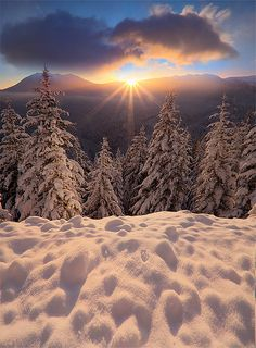 Winter Sunrise at Olympic National Park, Washington State. Winter Szenen, I Love Winter, Winter Magic, Winter Sunset, Winter Light, Foto Picture, Snow Scenes, All Nature, Winter Beauty