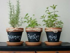 Gardening: Great idea for growing herbs inside and using all the chalk paint!