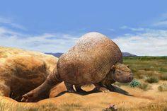 Life restoration of Doedicurus clavicaudatus by Lucas Lima