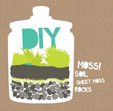 How to Make Beautiful DIY Moss Terrariums for Homemade Gifts or Home Accent Pieces