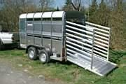 Ifor Williams Livestock Trailers TA5 at Universal Trailers
