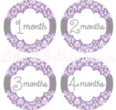 Baby Month Stickers Baby Monthly Stickers by LittleLillyBugDesign, $8.50