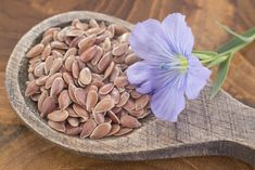 Photo about Flax is a seed rich in essential Omega 3 oil with many benefits and properties. Image of common, white, plant - 98702523 Omega 3 Oil, Seeds, Flowers, Crafts, Fitness, Crohn's Disease, Rheumatoid Arthritis, Food Portions, Manualidades