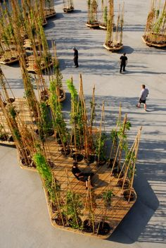 Archipiélago, Sistema modular dinámico hexagonal de islas vegetales  Matadero Madrid,  2011 by Jeronimo Hagerman