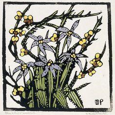 Blue orchid,  by Margaret Preston (circa 1935)