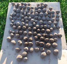 Seed balls - stop critters running off with your seeds until the rain comes and they start to grow.