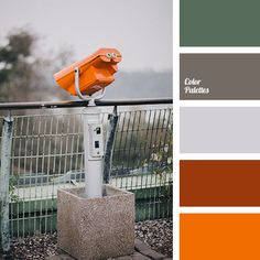 Color Palette #1838 | Color Palette Ideas