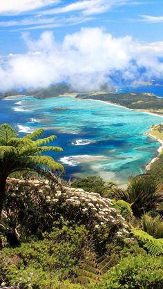 lord howe island, tasman sea, new south wales   COCONUTS AND SUNSHINE