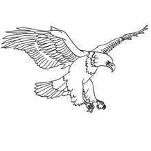 Stunning Eagle Coloring Book 91 Eagle printable Coloring page