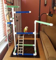 Rainbow Médio Tabletop & cagetop Pássaro Pvc Academia Play Stand Com Escada & poleiros