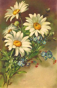 Gallery.ru / Фото #28 - цветочковое продолжение 2 - ninmix