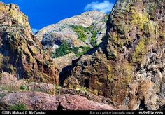 Columns of Igneous with Baldy Peak in the Organs Picture