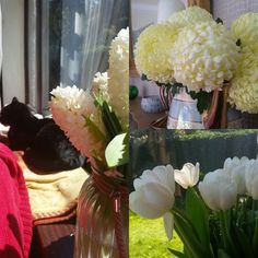 The house is full of fresh flowers sunshine and music.  Could this be our summer? by the.motherhood
