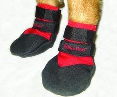 You may think they're a bit pricey, but they last!  Most ice melts can cause chemical burns on a dog's feet.  Ultra Paws also has military-grade boots, for the working dogs that do it all.