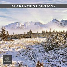 mrekowa Polana Resort & SPA Apartament Mroźny - zapraszamy! więcej: www.smrekowapolan... #poland #polska #malopolska #zakopane #mountain #tatry #place #gąsienicowa #winter #zima #destination