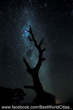 Barossa Valley Northern Lights, Cities, Australia, World, Nature, Travel, Naturaleza, Viajes, Destinations