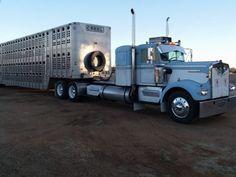 Cool Trucks, Big Trucks, Livestock Trailers, Freightliner Trucks, Custom Big Rigs, Semi Trucks, Farming, Badass, Friends