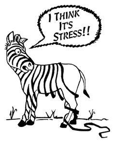 stress en je gezondheid