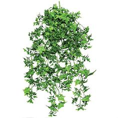 30 Inch Artificial English Ivy Outdoor Rated * Startling review available here  (This is an amazon affiliate link. I may earn commission from it)