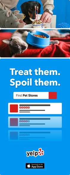 Like your pet more than people? We get that. Yelp has the best suggestions for grooming services, vets, and anything else your pet could need. All reviewed by millions of users. Get the app and start searching.