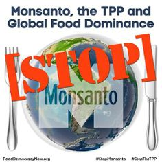 Monsanto, the TPP and Global Food Dominance. STOP MONSANTO! Take Action! http://action.fooddemocracynow.org/sign/stop_tpp_tafta_monsanto_protection_act_on_steroids