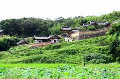 Aldea Tradicional de Yangdong (양동민속마을)
