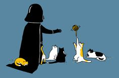 Of course Vader likes cats. Cats are all about the dark side.