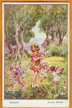 Woodland Secrets Series No 2, Caught