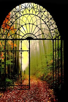 I want to walk through that gate..into a fantasy land of purple flowers, colorful birds, cool breezes and a mad passionate fling with a tall, dark, handsome stranger...