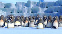 Auf Streifzug  Ein Pinguin im Dschungel? Richtig gehört. Der kleine Maurice (gesprochen von Dirk Bach) denkt nämlich, er sei ein Tiger. Also: Streifen aufgemalt und Kampfgebrüll geprobt.