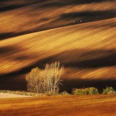 As100 melhores imagens sem Photoshop. Os campos Morávia, na República Tcheca.