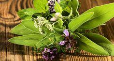 20-те най-добри рецепти на баба http://www.zdravnitza.com/a/nav/news/s/s/news_id/7170