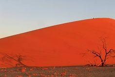 Speechless... #namibia #sossusvlei #dune45 #africa #thisisafrica #dune #nature #ig_worldphoto #beautifuldestinations #beautifulplanet #wonderful_places #sunset #discoverearth #ourplanetdaily #EarthVacations #natureaddict #globe_captures #theglobewanderer #awesomeearth #exploretocreate #bestnatureshots #welltravelled #travelingtheworld #nature_perfection #travel #traveling #travelgram #travelblogger #instatravel #potd by janatravelstheworld. potd #wonderful_places #africa #thisisafrica…