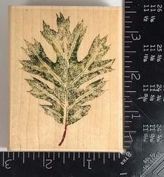 Rubber Stampede Stamp OAK TREE LEAF Autumn Fall Floral X36 #Unbranded