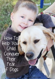 How To Help Your Child Conquer Their Fear of Dogs #LiveLikeYouAreRich
