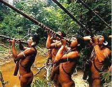 Resultado de imagen para caca indios
