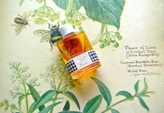 Vintage Diorissimo by Christian Dior EDT by myumlla, via Flickr