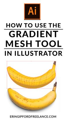 How to Use the Gradient Mesh Tool in Illustrator