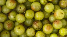 Find out Indian Gooseberry or Amla health benefits in Hindi & also check out Amla medicinal uses in Hindi. Also see why Amla is considered as a divine fruit.