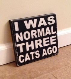 Well.. Not really!  Haha!     Crazy Cat Lady Sign wood wall art by MittenMadeDesigns on Etsy, $10.00