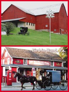 Top: Amish barn and buggy in Holmes County, Ohio.  Bottom:  Amish in Bird-in-Hand, Pennsylvania