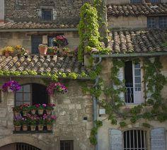 bluepueblo:    Rooftop Garden, Cote d'Azur, France   photo via moonlightrainbow
