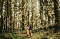 HOH Rainforest Engagement Pictures in Washington State — Courtney Sinclair Photography Engagement Photo Inspiration, Engagement Pictures, Engagement Session, Rainforest Pictures, Olympic National Forest, Crescent Lake, Anniversary Photos, Seattle Wedding, Couple Shoot